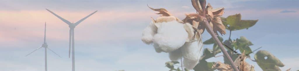 ekologisk bomull vindkraft